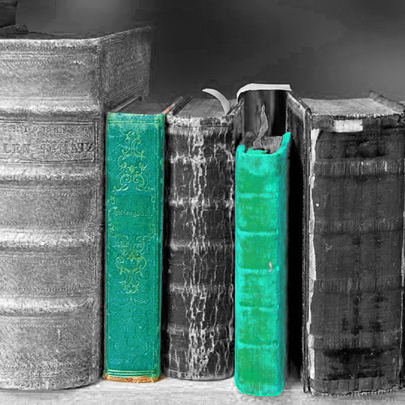 Lisa Keskin - Zeit für ein Buch11